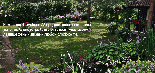 благоустройство участка спб travokosovv.ru
